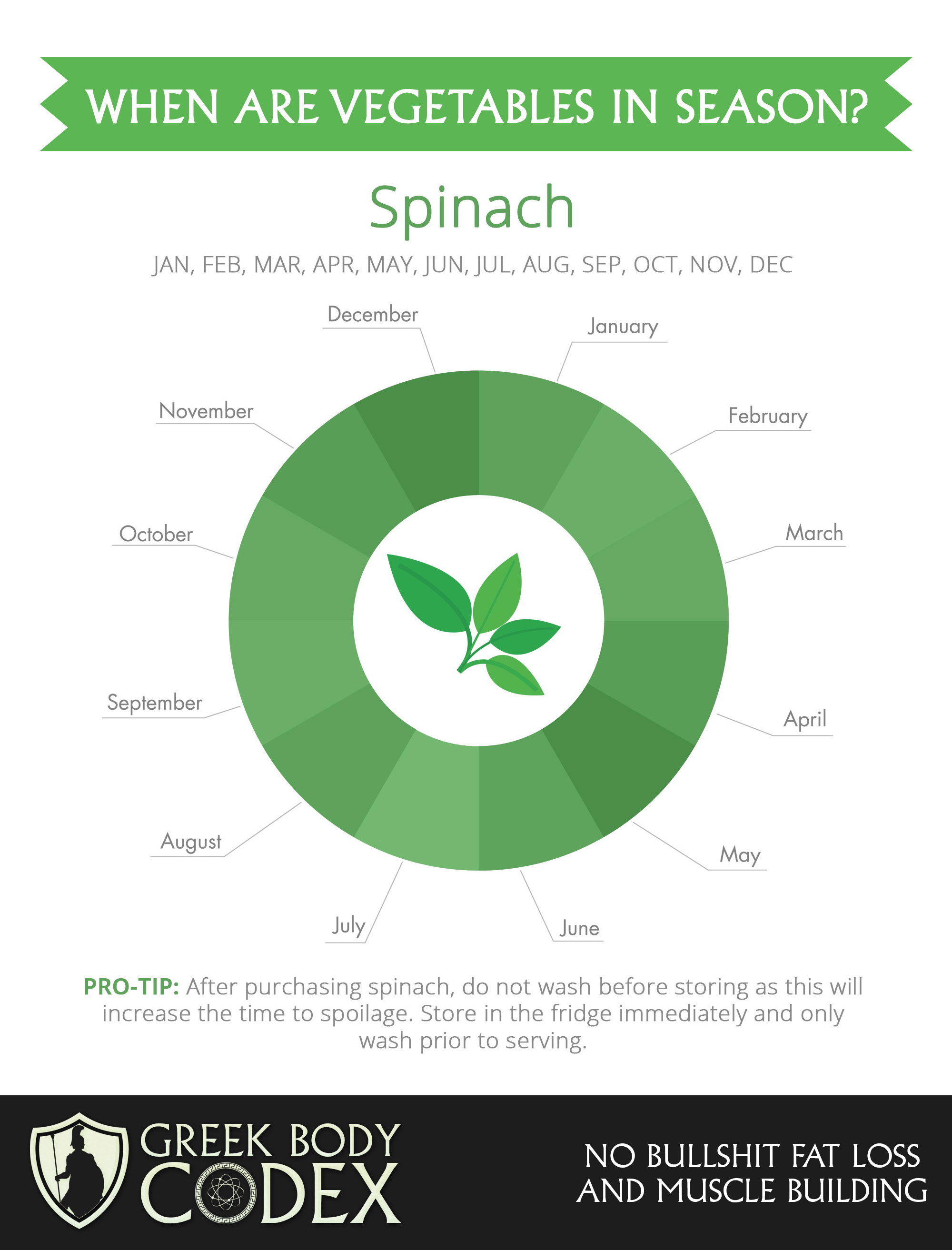 when-is-spinach-in-season
